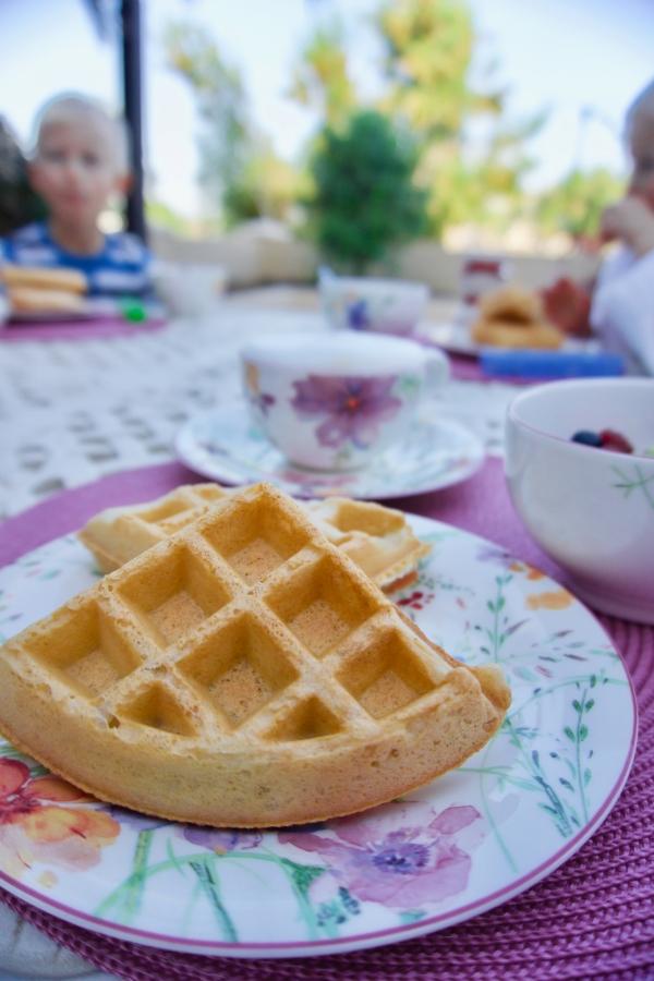 No egg, no dairy, gluten free waffles