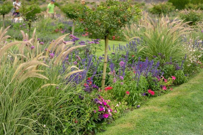 garden of shateau de chenonceau